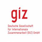 الجمعية الألمانية لتعاون الدولي