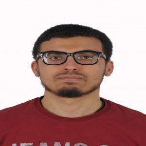 عبدالمعز عبد العزيز محمد عمران